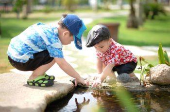 O que é educação cósmica Montessori?