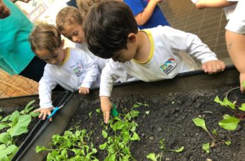 Trabalhar no jardim da família